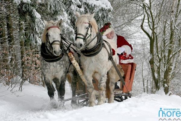 вызов Деда Мороза в Сочи
