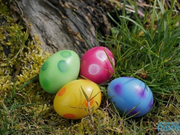 Драконьи яйца